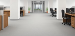 Commercial Carpet Cleaning In Sault Ste. Marie Chippewa County MI